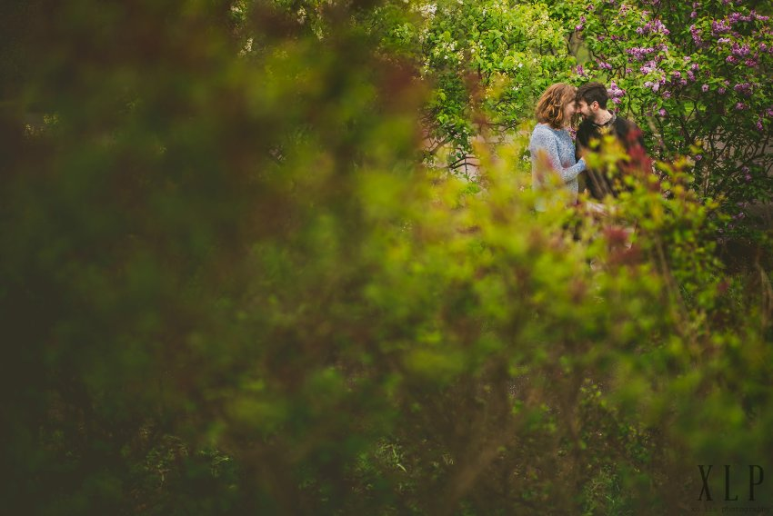 Arnold Arboretum Lilac Engagement Photos (14)