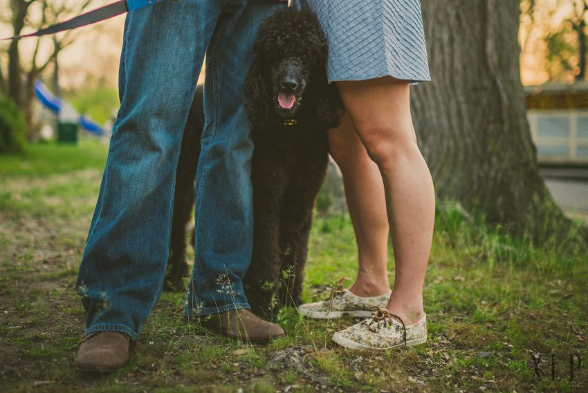 Dog with couple in engagement session