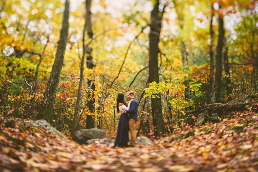 autumn engagement portraits