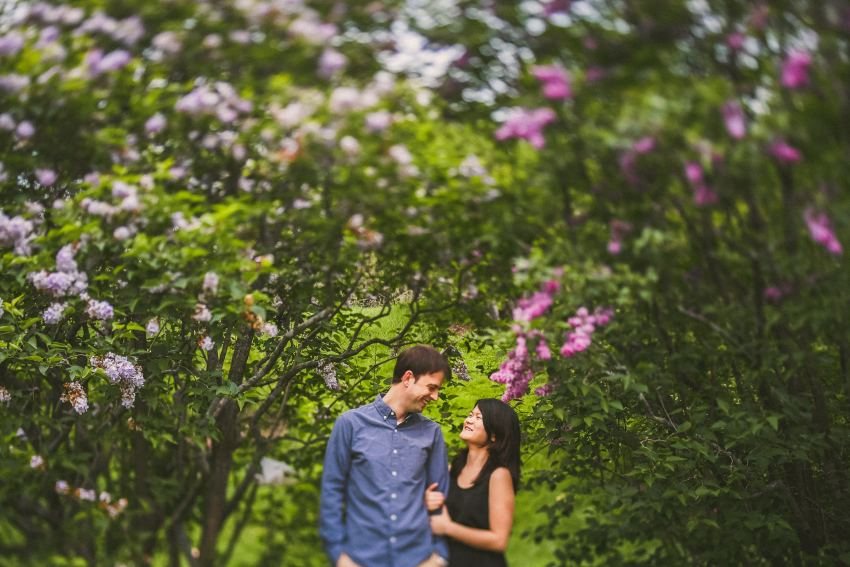 Arnold Arboretum sunrise engagement portrait