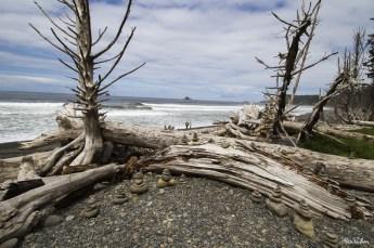 Alex Pullen Photography Portland Oregon Canon Beach-1431