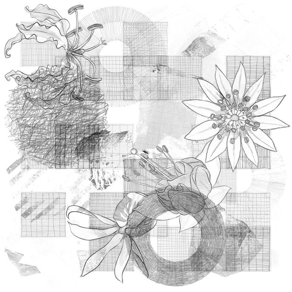 ApeiroPattern generative art Genuary 2021 Day 02 by Alex Russell (full image)