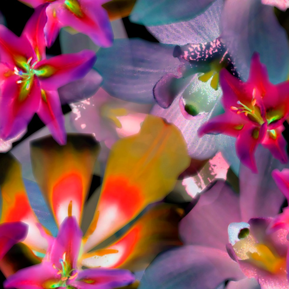 Pattern and print design NegativePhotoFloral by Alex Russell from the FAQs and info for students page