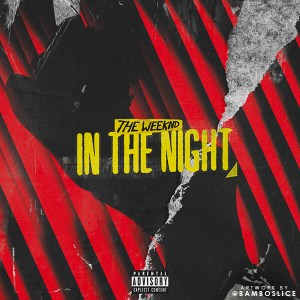 10_In-The-Night1