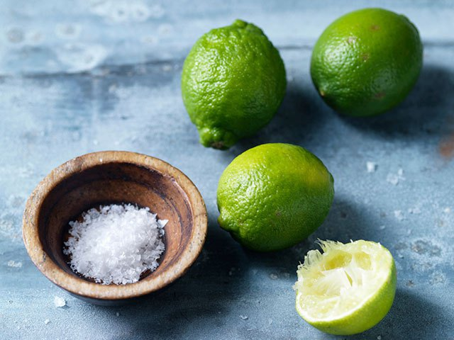 Image result for salt and lime
