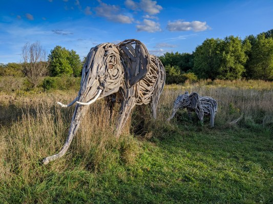 Wildlife (Park Hill)