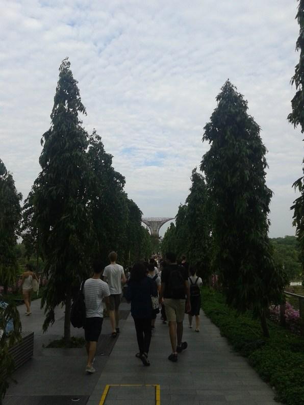 Walking towards the Gardens. Приближаясь к Садам у залива.