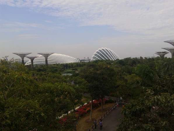 Another view on the Flower Domes. Оранжереи с другого угла.