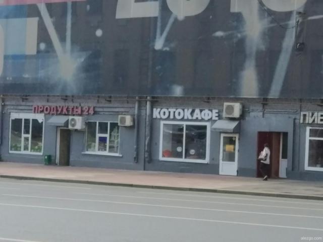 котокафе
