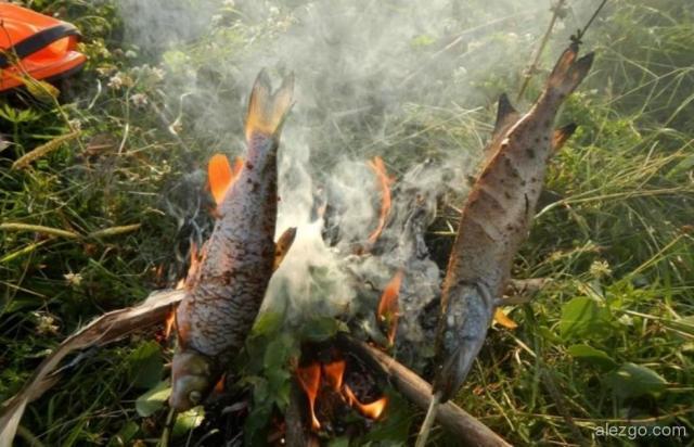жарят рыбу на костре