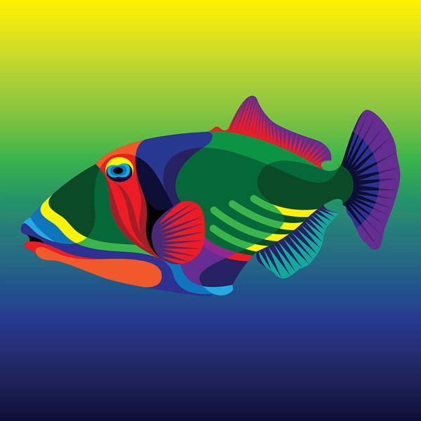 Endangered Tropical Fish Matt . Moore - Alfalfa Studio