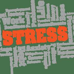 La Bioquimica del stress