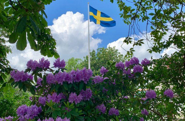 Ruotsin hallitus kaatui