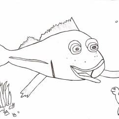 Biological Weathering Diagram Wiring For Ceiling Light Free Coloring Pages Of