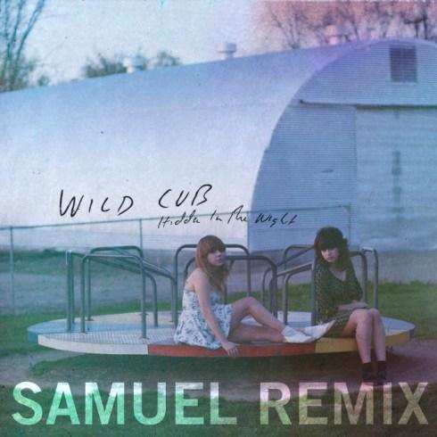 Wild Cub Reveal %22Hidden In The Night%22 SAMUEL Remix