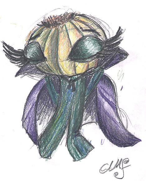 Cebolla Vampira, boceto