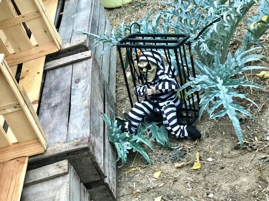 Jardin Rosa Parks Alfortville fête Halloween