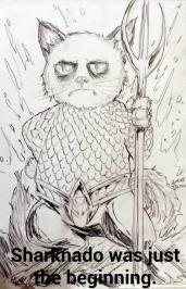 aquaman grumpy cat alfred trujillo