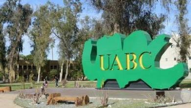 Photo of Deuda con UABC va en aumento