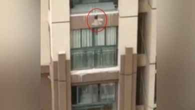 Photo of [VIDEO] Salvan con una manta a niño que cae de sexto piso
