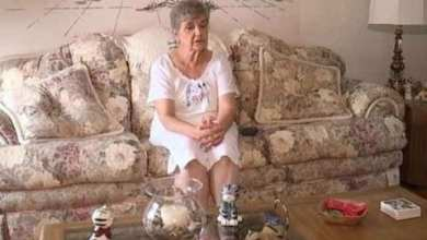 Photo of Abuelita irá a la cárcel por alimentar gatos callejeros