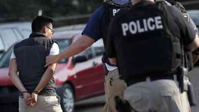 Photo of ICE persigue a inmigrantes, pero no a sus empleadores
