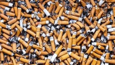 Photo of Proponen multa de hasta 25 mil pesos a quien arroje colillas de cigarro en la calle