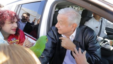 Photo of Intentan regalar un perico a López Obrador durante una gira