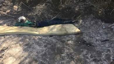 Photo of Madres de desaparecidos hallan fosa con cuerpos en Tijuana