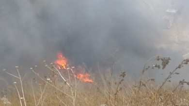 Photo of Incendio en basurero clandestino de Tijuana