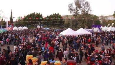 Photo of Disfrutan 15 mil ciudadanos de la Posada celebrada en el Parque Morelos