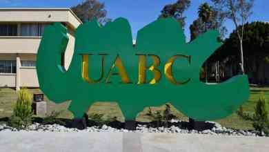 Photo of Alumnas de UABC denuncian a profesores y alumnos violadores