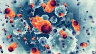 Photo of Hacen descubrimiento que ayudaría a curar la metástasis