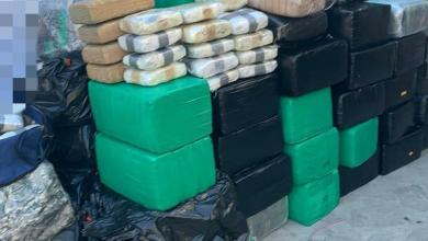 Photo of FGR decomisa fuerte cantidad de marihuana en Tijuana