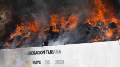 Photo of Incineran varias toneladas de drogas en Tijuana
