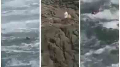 Photo of VIDEO: Adulto mayor fue arrastrado por el mar en Rosarito