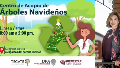 Ayuntamiento-de-Tecate-habilita-centro-de-acopio-para-árboles-navideños