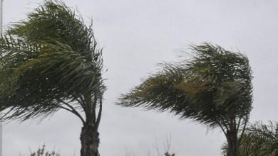 Advierten-por-vientos-fuertes-y-frío