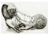 """""""Love"""" by Alf Sukatmo. Pencil on paper."""