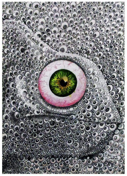 """""""Chameleon"""" Pencil, and watercolor pencil on paper ©Alf Sukatmo. 2017"""