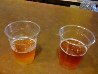 60 and 90 Minute IPAs, straight from the source