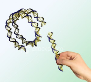 Genetic Engineering - Has Been Revolutionized around the Globe