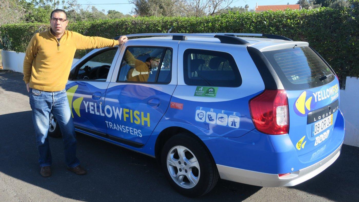 Yellow Fish Transfers