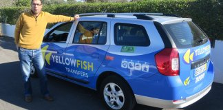 Yellow Fish Transfers
