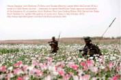 Afghanistan IRaq Georgia Nimrod Tomb Opium