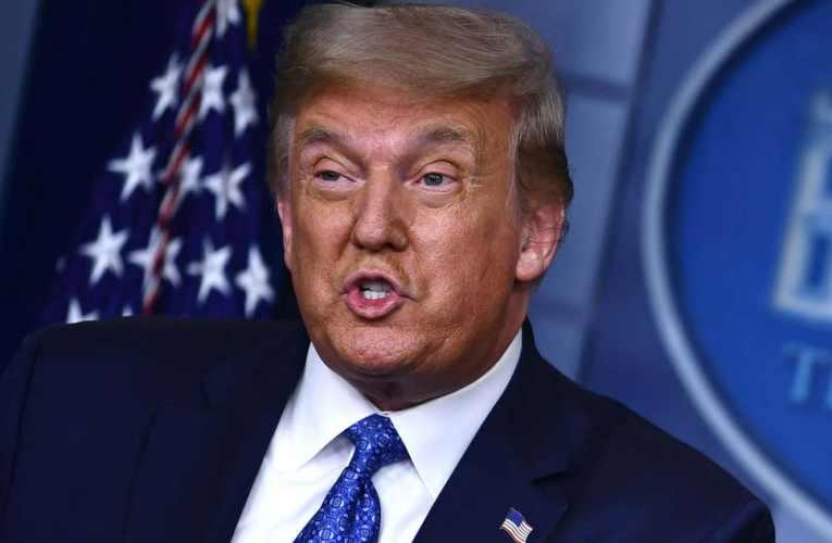 Donald Trump appelle au report de l'élection présidentielle américaine de 2020