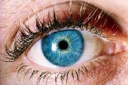 الحساسية للضوء وعدم وضوح الرؤية من أعراض جفاف العين Alghad
