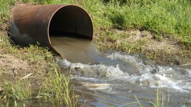 Photo of إربد: مواطن يتسبب بتلوث خط المياه المغذي لدوقرا