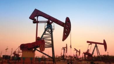 Photo of النفط ينخفض بعد تقرير أوبك والمخزونات الأميركية تقدم الدعم