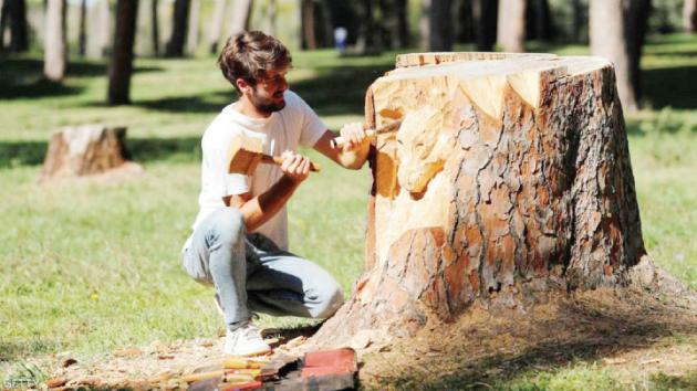 Photo of حين تتحول جذوع الأشجار إلى لوحات فنية!